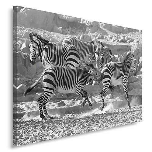 Zebra Parts Control Panel - Feeby Single Panel Print, Wall Art Picture, Image Printed on Canvas, 1 part, 19.68x27.55 in, ZEBRAS, NATURE, BLACK AND WHITE