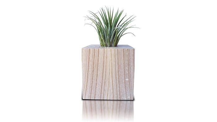 pot de decoration interieur finest plante interieur avec petite table de cuisine pas cher. Black Bedroom Furniture Sets. Home Design Ideas
