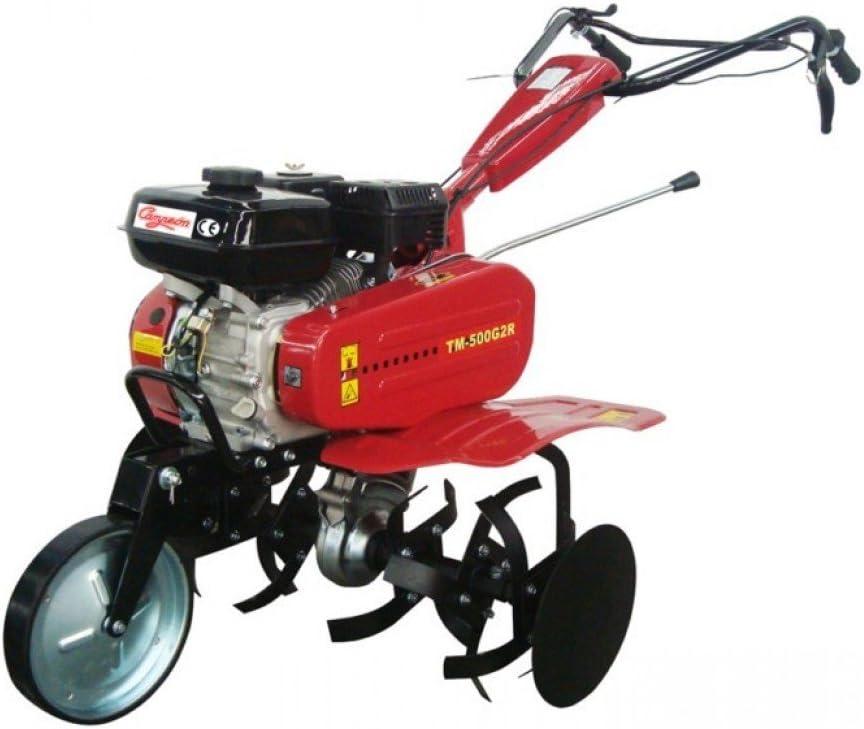 CAMPEON 641X500 - Motoazada Tm500 Gr2 6,5 Cv 80Cm 196