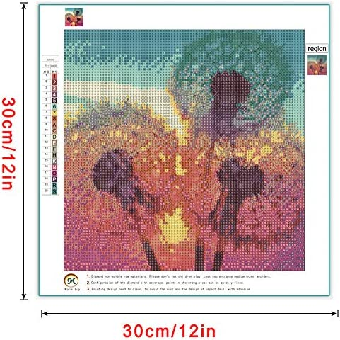 DIY 5D Diamond Painting Kits for Adults,Dandelions Dot Full Drill Crystal Rhinestone Embroidery for Home Wall Decor(12X12in)