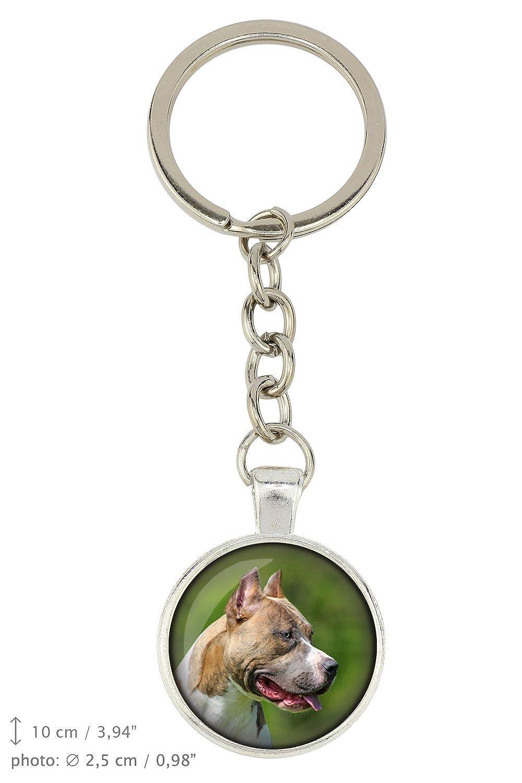 Handmade Pit Bull Dog Pendant for Dog Lovers Photo-Jewelry Box