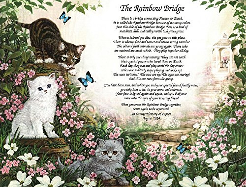 NAMES TO REMEMBER What's in a Name? Rainbow Bridge Pet Memorial for Loss of A Beloved Cat Gifts for Cat Owners Lovers