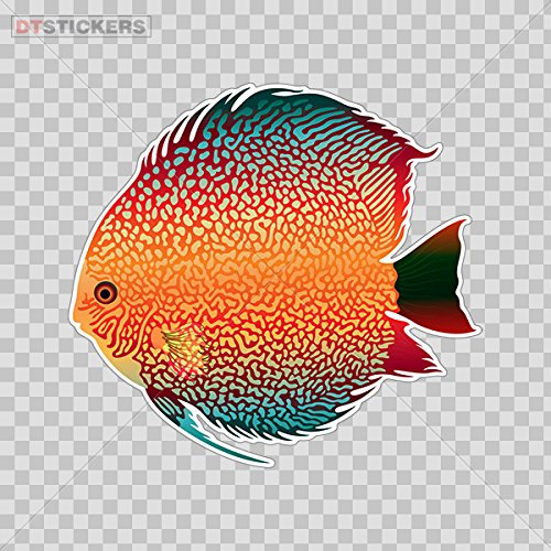 - Vinyl Sticker Decals Fish Discus Freshwater Aquarium Sports Bike D217 2676X