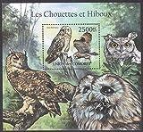 Comores Owls Bird Souvenir Sheet