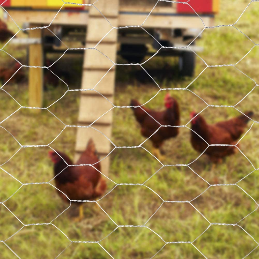 The Fellie Chicken Wire Galvanised Steel Metal 1.2x25m Garden Wire Mesh for Aviary Fence Chicken Rabbit Protection Mesh breadth 25x25mm 0.72mm Galvanized