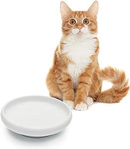 MSBC Cat Food Water Bowl, Wide Shallow Ceramic Cat Dish, Non-Spill Pet Bowl Porcelain, 10oz, White