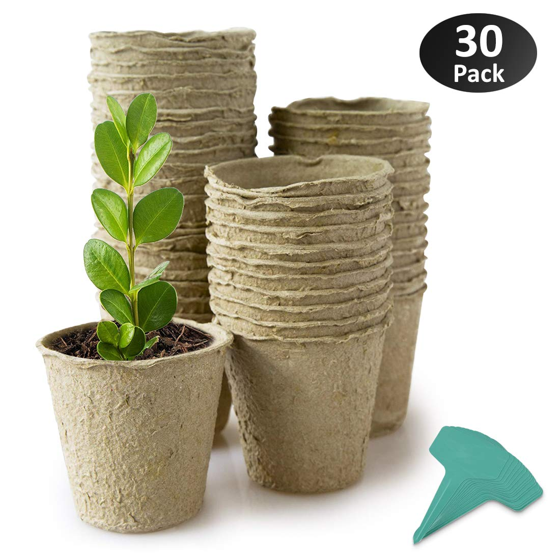 GROWNEER 30 Packs 4 Inches Peat Pots Plant Starters for Seedling, Biodegradable Herb Seed Starter Pots Kit, Garden Germination Nursery Pots with 15 Pcs Plant Labels by GROWNEER