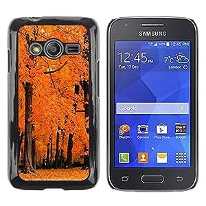 iKiki Tech / Estuche rígido - Nature Orange Woods - Samsung Galaxy Ace 4 G313 SM-G313F