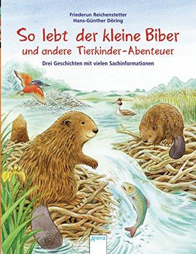 So lebt der kleine Biber und andere Tierkinder-Abenteuer: Drei Geschichten mit vielen Sachinformationen