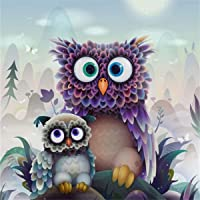 5D Diamond Painting by Number Kits, Full Drill DIY Crafts & Sewing Cross Stitch Wall Stickers for Living Room Decoration Two Owls (30X30CM/12X12inch)