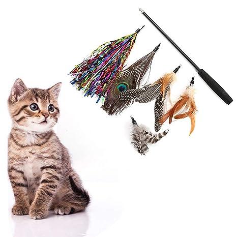 Feli546Bruce Juguete para Gato, Juguete para Gato, 5 Cabezas ...