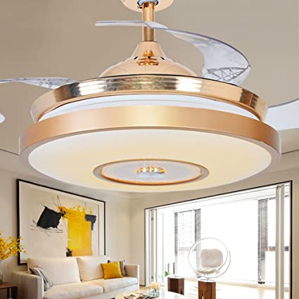 Lighting Groups 42 Inch Ceiling Fan with Hidden Blades