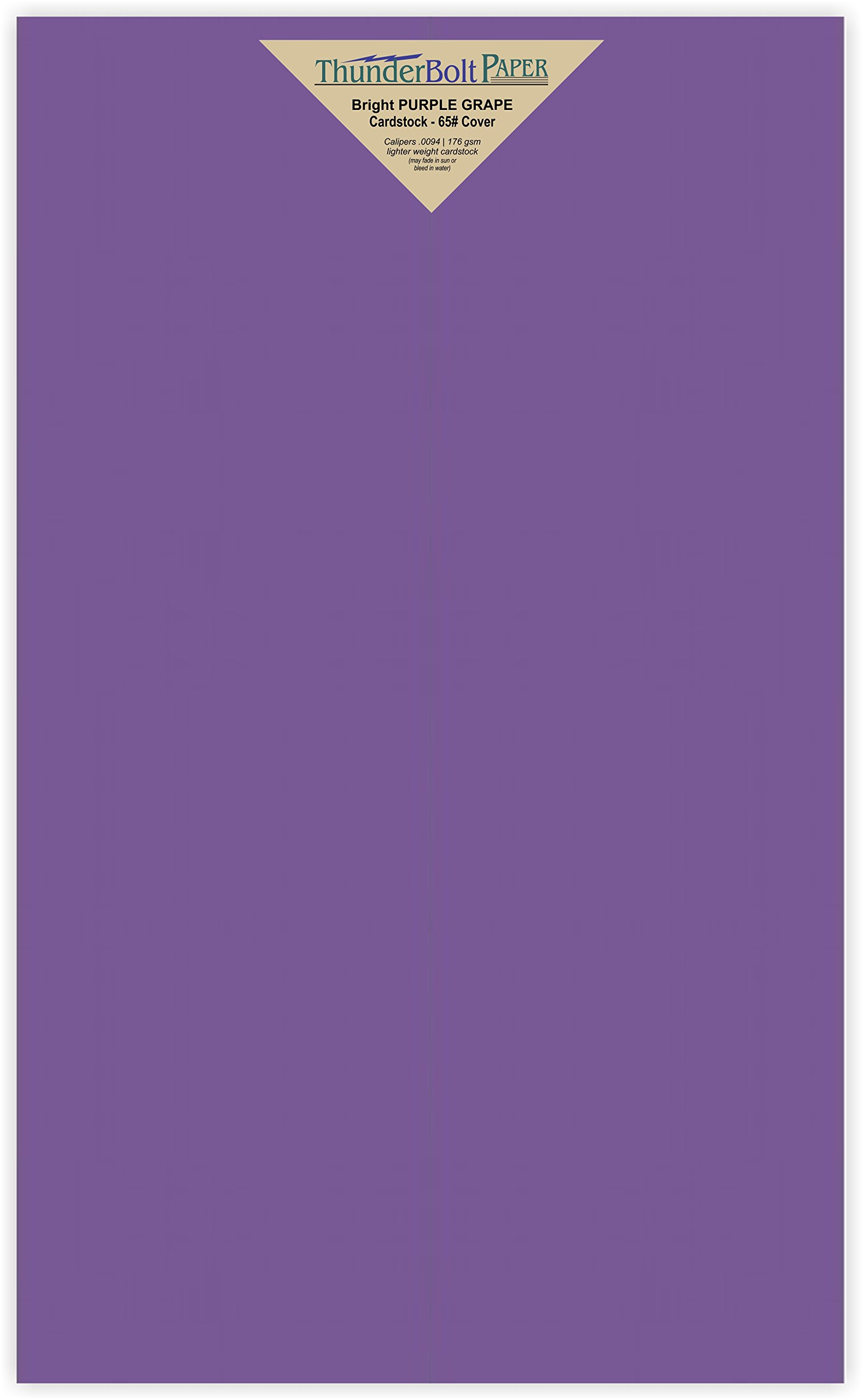 100 Bright Purple Grape 65# Cardstock Paper 8.5'' X 14'' (8.5X14 Inches) Legal|Menu Size - 65Cover/45Bond Light Weight Card Stock - Bright Printable Smooth Paper Surface