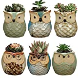 6 Pack Big Smile Owl Pot, Ceramic Flowing Glaze Base Serial Set Succulent Plant Pot Cactus Plant Pot Flower Pot Container Planter Bonsai Pots with A Drainage Hole Perfect Gife Idea