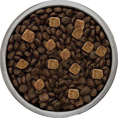 Merrick Backcountry Grain Free Hero'S Banquet Dry Dog Food, 22 Lbs. by Merrick (Image #2)