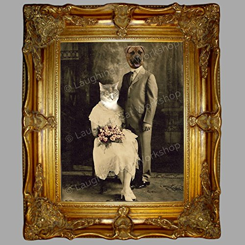 - Funny anthropomorphic Old World Victorian Antique wedding portrait, cat dog vintage photo, whimsical altered photo art, Cat lovers gift Boxer Dog Art Kitsch Surreal Hipster Dorm decor