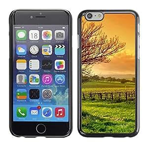 TopCaseStore / la caja del caucho duro de la cubierta de protección de la piel - Nature Beautiful Forrest Green 3 - Apple iPhone 6