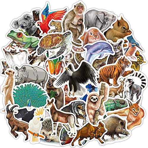 80 PCS Vinyl Stickers Pack Waterproof Decals for Laptop Phone Case Water Bottle Scrapbook Luggage Skateboard Bicycle Car