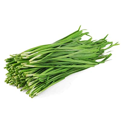 Chinese Chive Leek Vegetable 500 Seeds : Garden & Outdoor