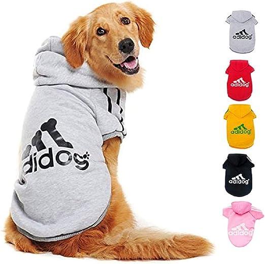 Ducomi Adidog - Sudadera con Capucha para Perros en Algodón Suave - Costuras Resistentes - Disponibles de XS a 8XL - Se envía Desde España (XS, Gris): Amazon.es: Productos para mascotas