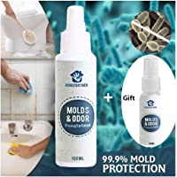 Amazon.co.uk Best Sellers: The most popular items in Mould Removers