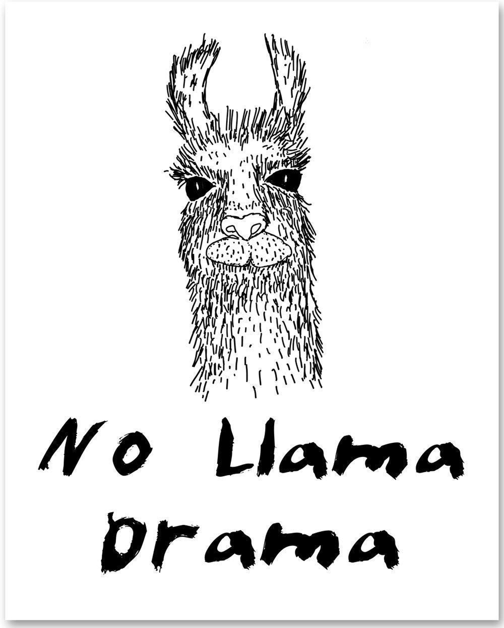No Llama Drama - 11x14 Unframed Typography Art Print - Makes a Great Funny Gift Under $15