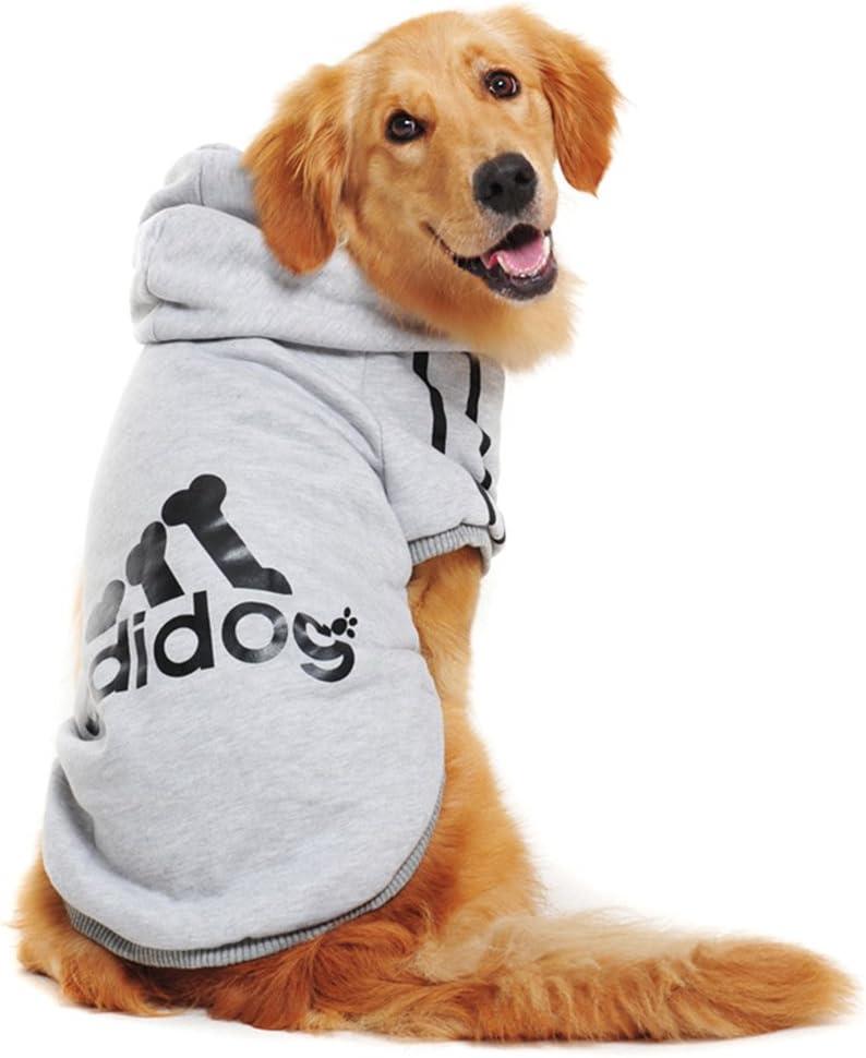 Las mejores sudaderas para perros de 2020 (Análisis) 6