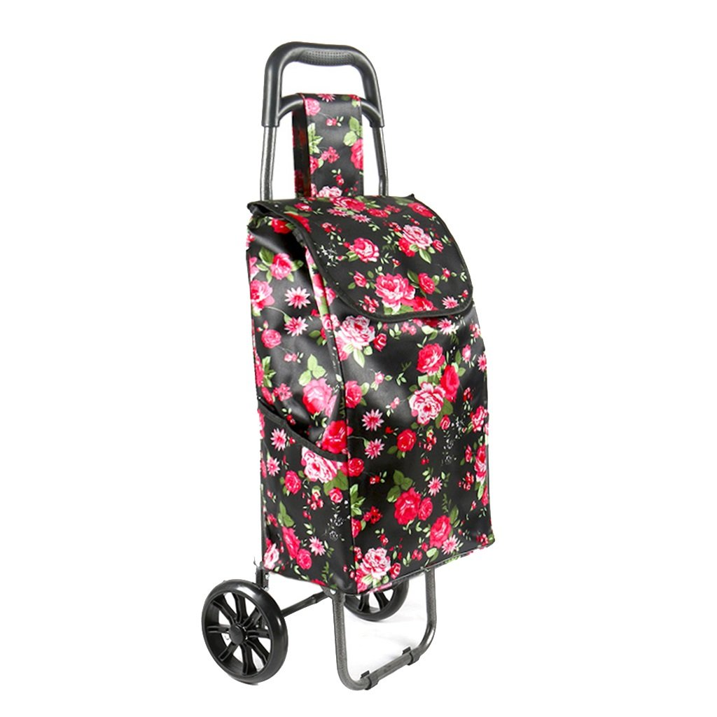Shopping cart Push-pull cart Grocery cart Luggage cart Trolley cart Trolley trailer Small hand cart Home elderly shopping cart (Color : Color, Size : 192591cm)