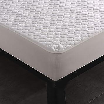 Amazon Com Sue Joe Twin Mattress Protector Waterproof Bed Bug