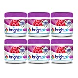 Bright Air Solid Air Freshener and Odor Eliminator,Wild Raspberry and Pomegranate Scent, 14 Ounces, 6 Pack