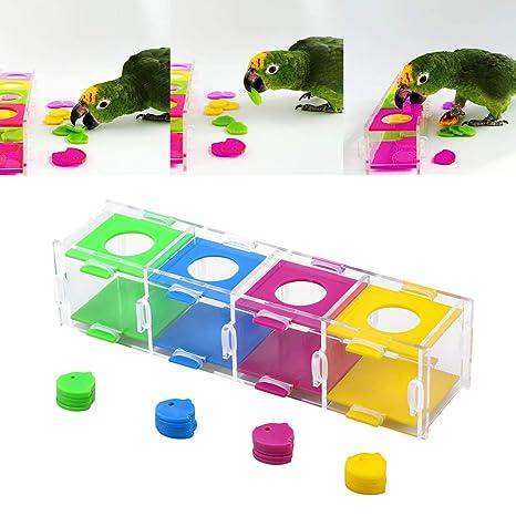 POPETPOP Caja de Monedas pájaro Colores Inteligencia Entrenamiento ...