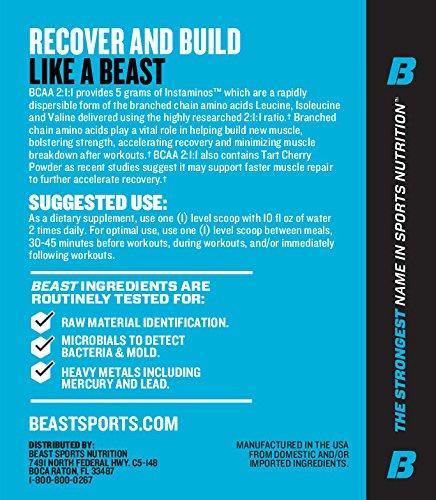 Beast Sports Nutrition BCAA 2:1:1 Supplement