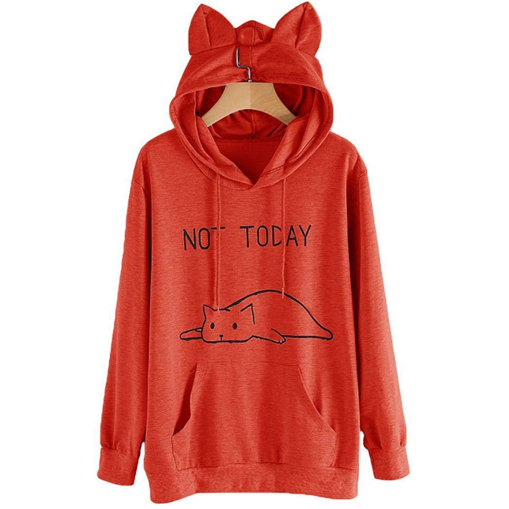 Decent hoodie