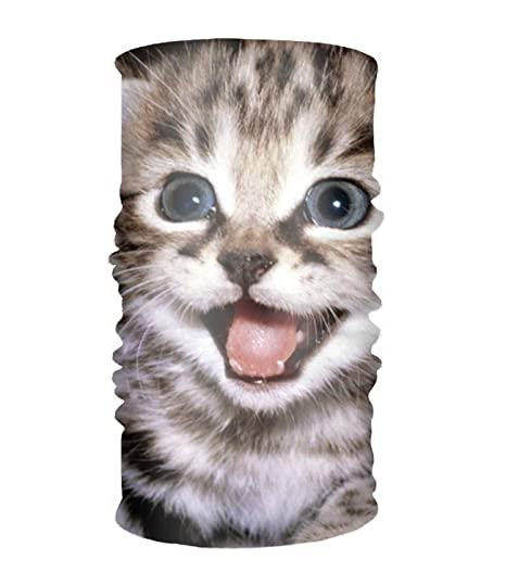 Unisex Beautiful Cats Wallpapers Sweatband Soft And Stretchy