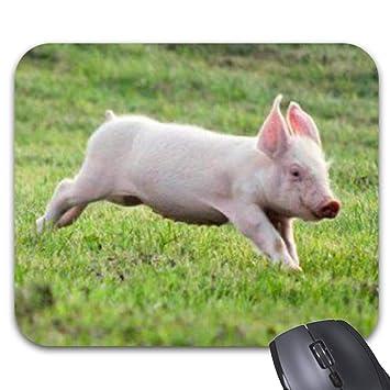 Amazon.com: Roonyete Shop - Alfombrilla de ratón para bebé ...