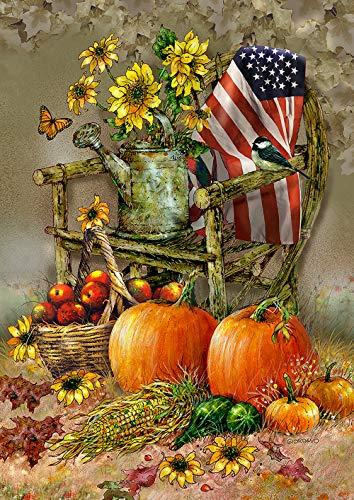 Toland Home Garden 1012211 Autumn Chair 28 x 40 Inch Decorative, House Flag by Toland Home Garden