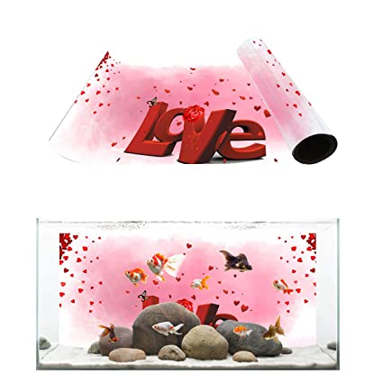 Amazon Com Fantasy Star Aquarium Background Flying Love