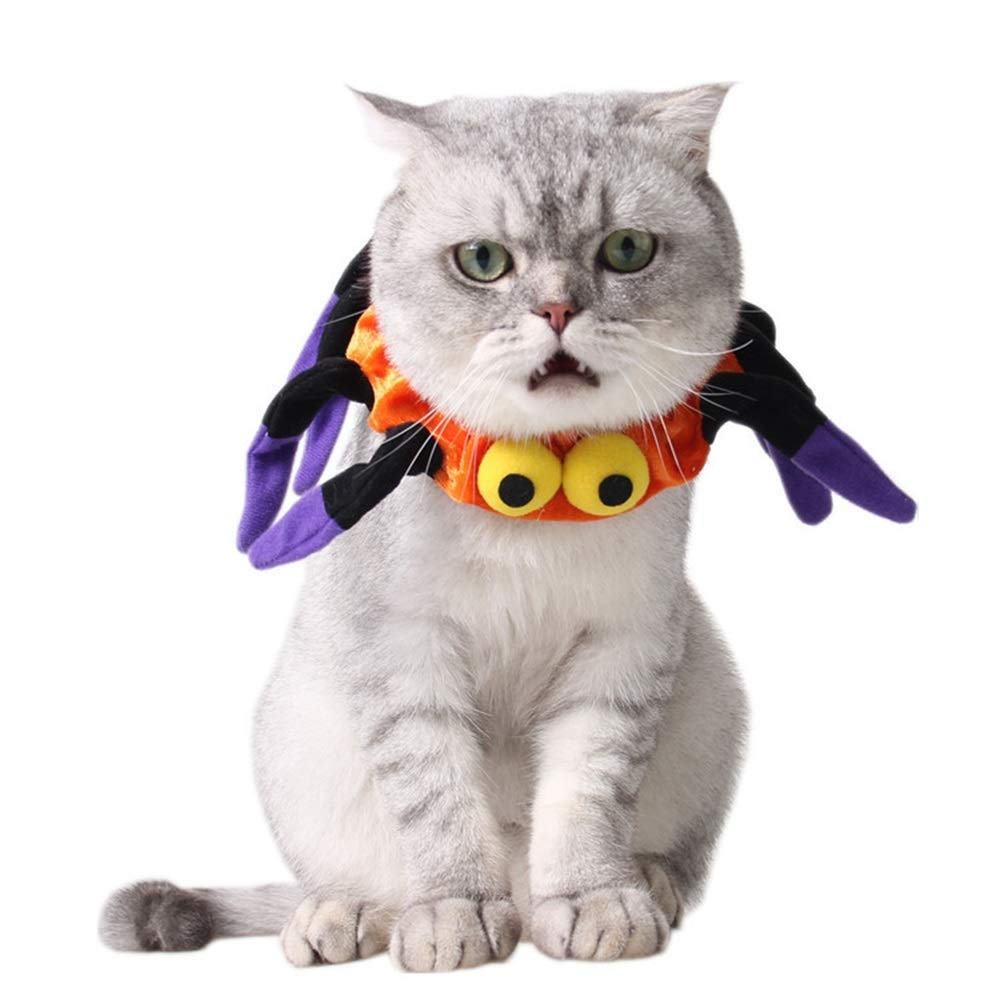 ROZKITCH Halloween Spider Dog Cat Collar Soft Cute Halloween Decorative Elastic Cat Collar Charm Outfits Dress Up Accessories for Small Kitten Cat Puppy