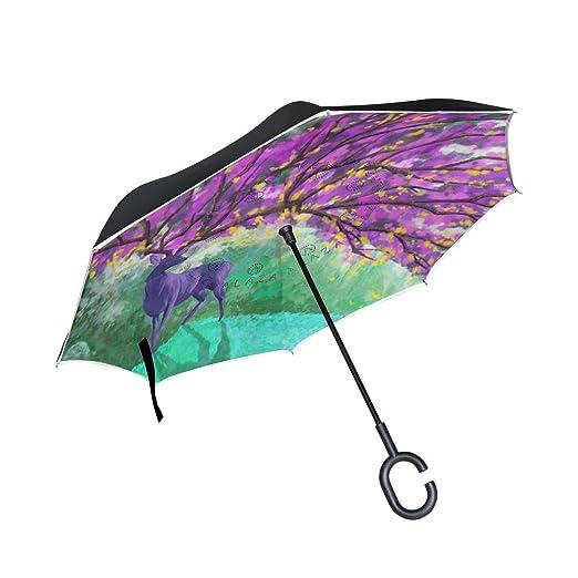 HYJDZKJY Paraguas invertido de Doble Capa Paraguas Plegable ...