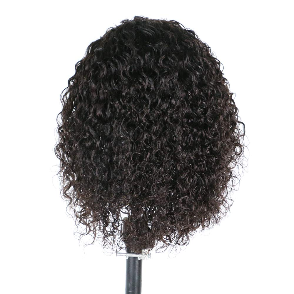 Short Curly Wig Human Hair Brazilian Lace Front Human Hair Wigs With Baby Hair Pre Plucked Bleached Knots (12inch)