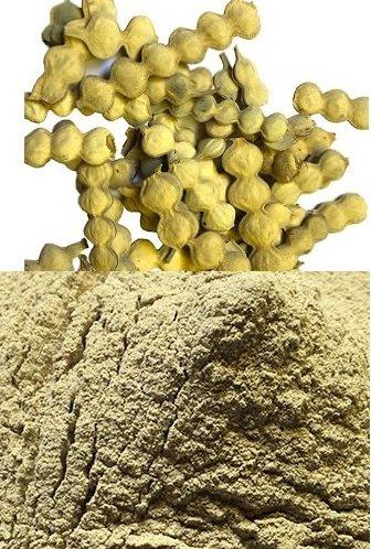 Buy Neeraj Traders Babool Phali Powder 100 G Online At Low Prices