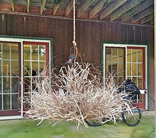 Twig Chandelier Buy Online In French Polynesia At Frenchpolynesia Desertcart Com Productid 60389264