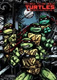 Teenage Mutant Ninja Turtles: The Ultimate Collection Volume 6