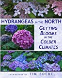 Hydrangeas in the North: Getting Blooms in the Colder Climates