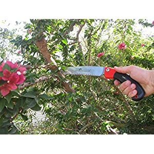 """TABOR TOOLS TTS32 Pruning Saw with Sheath For Trimming Tree Branches & Clearing Forest Trails, 10"""" Straight Steel Turbocut Pull-Action Blade, Your Next Professional Pruning Tool!"""