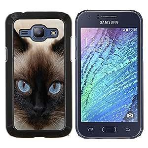 Siamés Ojos azules del gato felino- Metal de aluminio y de plástico duro Caja del teléfono - Negro - Samsung Galaxy J1 / J100