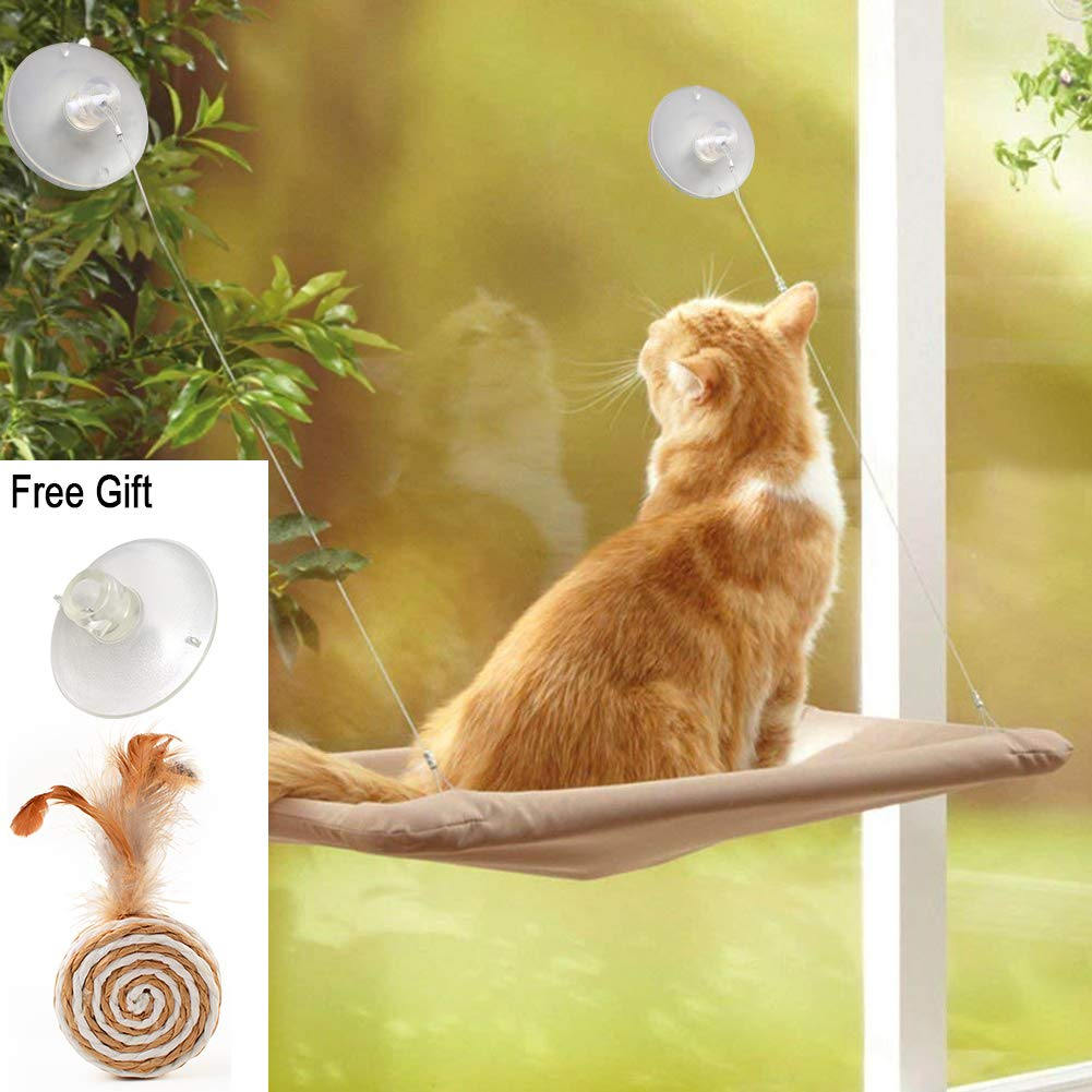 Miraculous Zalalova Cat Window Perch Cat Window Seat Bed Hammock Space Saving Design With 1Pc Funny Cat Toys 1Pc Extra Suction Cup Cat Shelves All Around 3600 Dailytribune Chair Design For Home Dailytribuneorg