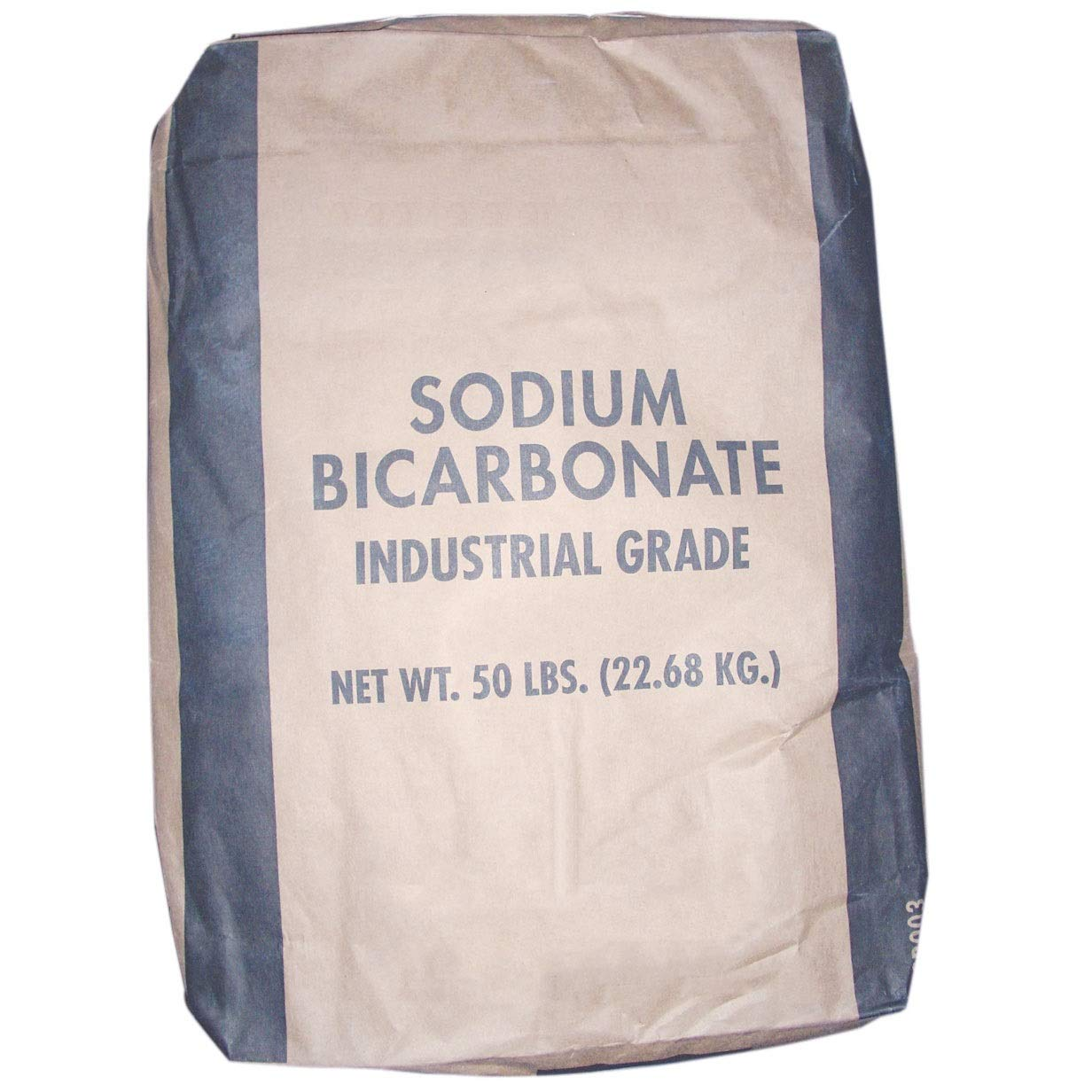 In The Swim Alkalinity Increaser Sodium Bicarbonate for Pool Spa 50 Pound Bag by In The Swim