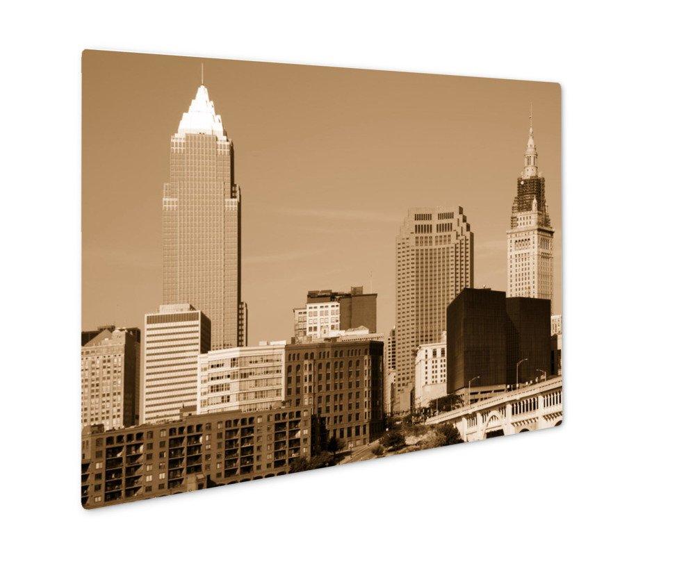 ashley giclee cleveland ohio 壁アート写真印刷メタルのパネル