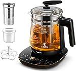 ICOOKPOT Multi-Use Electric Kettle Borosilicate Glass Tea Maker and Programmable Control